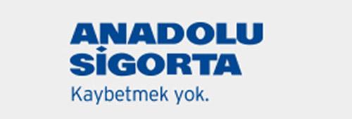 en iyi kasko şirketi anadolu