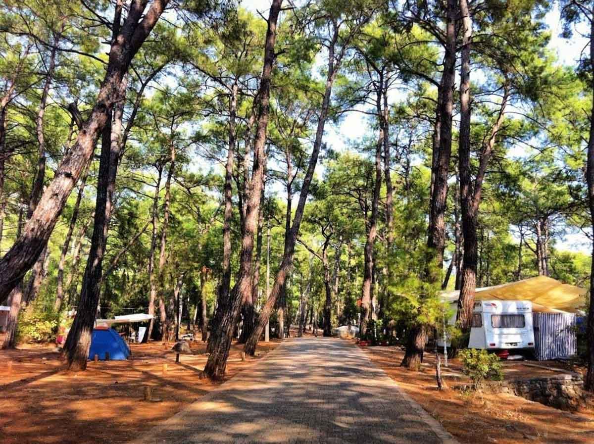 Akyaka Gökova Orman Kampı
